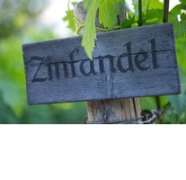 2016 March Wine Seminar-The Many Faces of Zinfandel